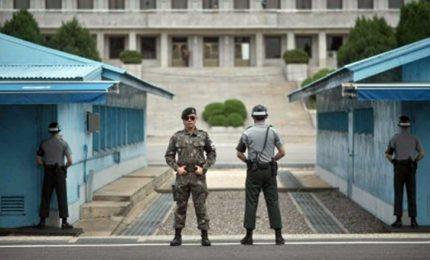 Coree, un viaggio nell'invisibile della Zona Demilitarizzata
