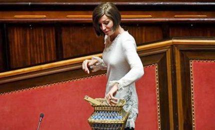 Salvini spiazza Fi e vota la senatrice Bernini