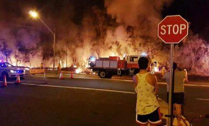 Australia, mega incendio minaccia la periferia di Sydney