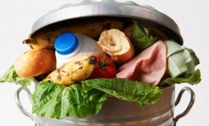 Spreco alimentare genera 8% delle emissioni globali di gas serra