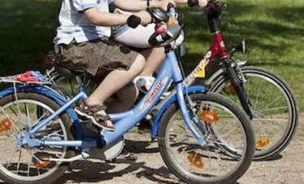 Usa: ciclisti attaccati da puma in foresta, un morto e un ferito