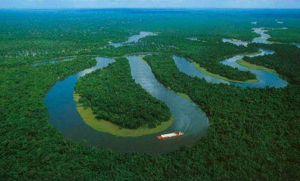 I melodici versi di Marcia Theophilo per scoprire l'Amazzonia
