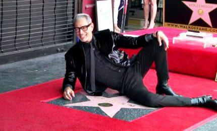 Show di Jeff Goldblum: per lui una stella sulla Walk of Fame