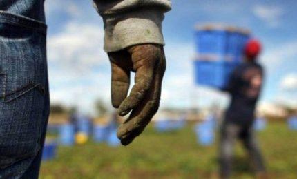 Pane duro e 3 euro all'ora ai migranti, 2 arresti a Marsala