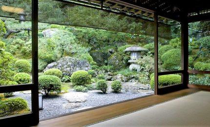 Il meraviglioso mondo del muschio da giardino, solo in Giappone