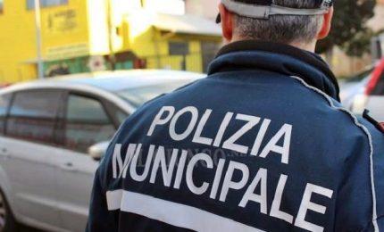Nordafricano fugge da auto dei vigili e viene investito in Tangenziale a Milano