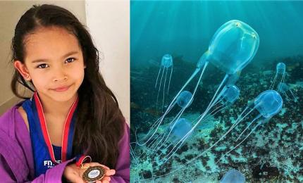 Filippine, bimba italiana di sette anni muore per una medusa