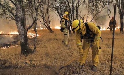 """""""Mendoncino Complex"""", la California affronta il peggiore incendio della sua storia"""