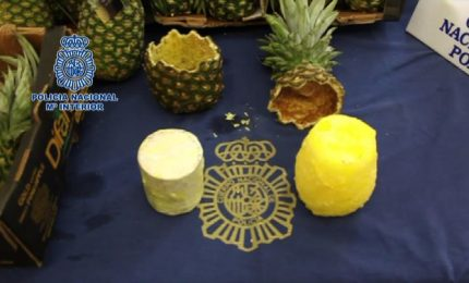 Spagna, 67 kg di coca nascosti in ananas dal Costa Rica