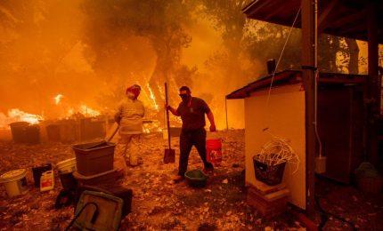 """Inferno California, salgano a 42 le vittime. Trump: """"Una catastrofe naturale"""""""