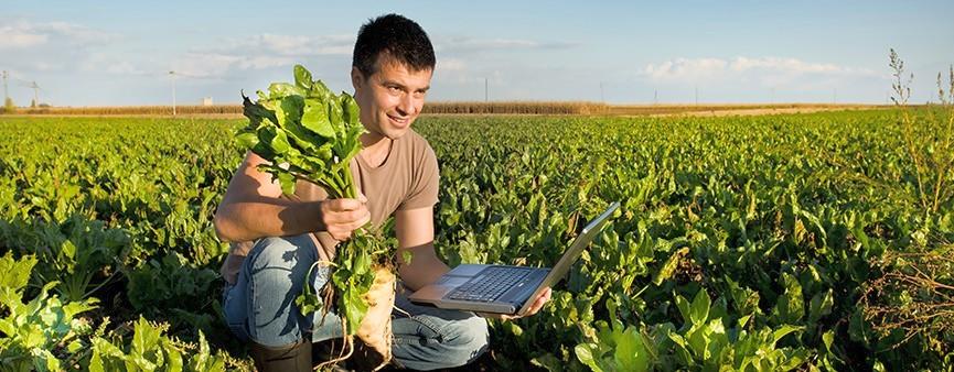 Sicilia, 235 milioni di euro per giovani agricoltori. Ok a graduatoria