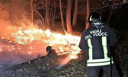 Vasto incendio nel Pisano, minacciate abitazioni