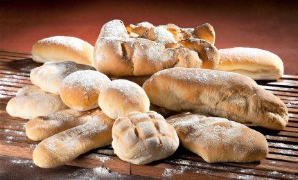 Attenti al pane, nella crosta componenti che invecchiano le cellule