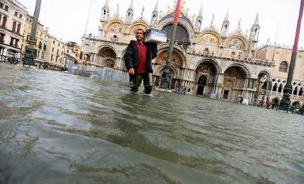 Acqua alta eccezionale a Venezia, piazza San Marco chiusa