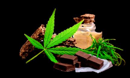 Errori al volante e riflessi più lenti, occhio ai cibi a base di cannabis