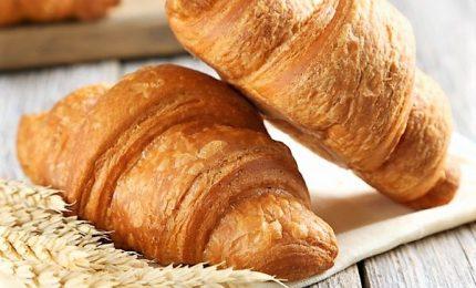 Salmonella, il ministero Salute richiama Croissant Bauli
