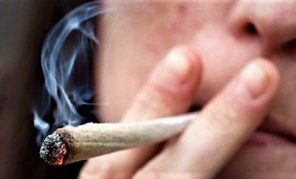 Desirée, droga piaga dei giovani: uno su tre l'ha provata