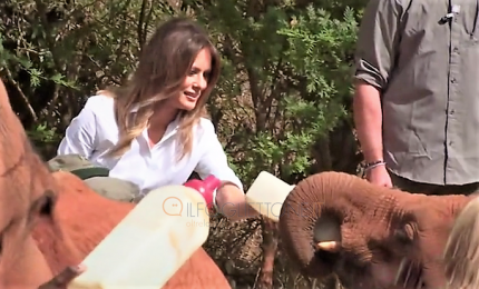 Melania Trump nutre i baby elefanti in Kenya