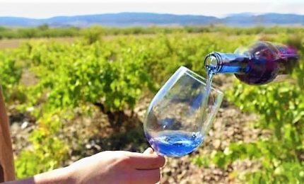 Il vino blu? L'idea innovativa di una startup spagnola