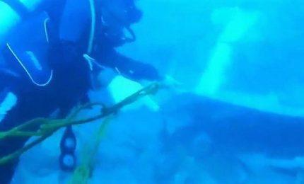 Aereo caduto in Indonesia, localizzata la fusoliera in mare