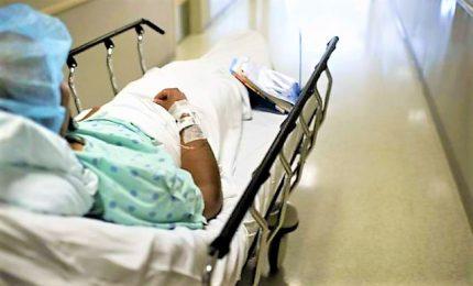 Una paziente coperta di formiche, ispettori al Don Bosco. Ma familiari non sporgono denuncia