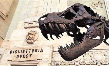 Un T-Rex a Milano Centrale: la stazione ha un nuovo ospite