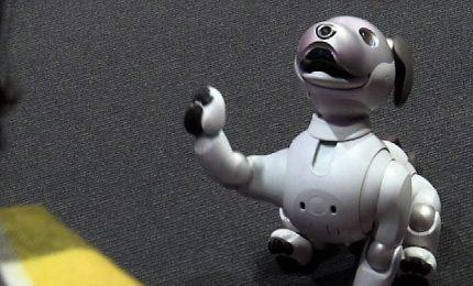 Aibo, il cane-robot che controlla i propri familiari a distanza