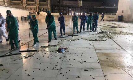 """Cavallette invadono la Mecca, autorità saudite: """"non mangiatele"""""""