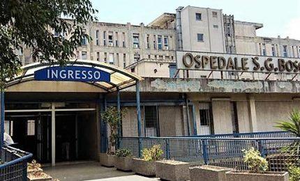 A Napoli ancora formiche in ospedale San Giovanni Bosco