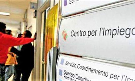 Reddito cittadinanza, appello Regioni: rischio caos operativo