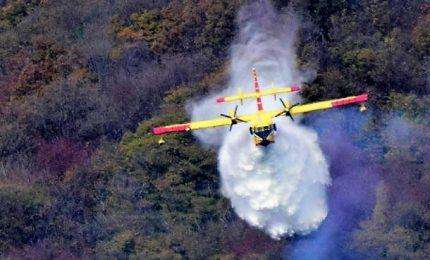 Vasto incendio in provincia di Varese, i Canadair in azione