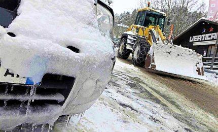 Gelo e neve al Centro-Sud, anche gli animali in cappotto