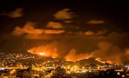 Brucia la Nuova Zelanda, ci vorranno settimane per spegnere roghi