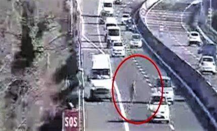 Perde carico sull'A11, fa retromarcia e attraversa tra tir e auto