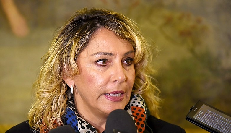 Regioni: Di Maio propone 4.500 navigator ma sarà caos uffici