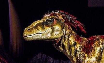 Dinosauri analogici, idea di edutainment spettacolare