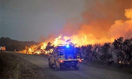 Australia in fiamme, bruciati 6.000 ettari