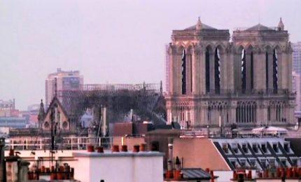 Notre Dame devastata dalle fiamme, ma la struttura ha retto