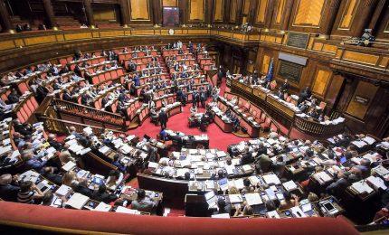 Sì definitivo del Senato, class action è legge. Scontro M5S-Forza Italia