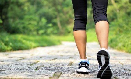 Sostenere esami? Attività fisica allena anche la memoria