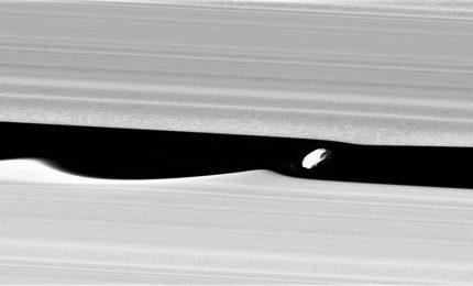 Anelli Saturno inediti, materiale organico e striature da impatto