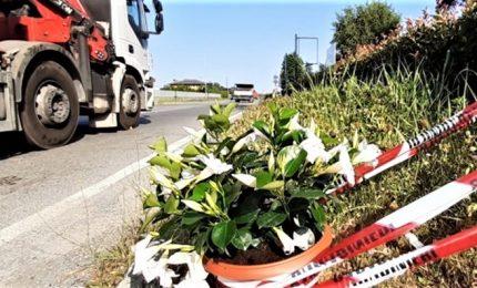 Carabiniere travolto e ucciso, arrestato 34enne a cui avevano ritirato in passato la patente