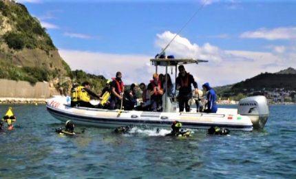 """Immersioni marine per i ragazzi ciechi, ecco il progetto """"Searen"""""""
