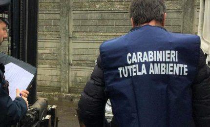 'Ndrangheta e gestione rifiuti, 13 indagati a Reggio Calabria