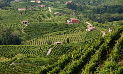 Le Colline del Prosecco di Conegliano e Valdobbiadene ora sono Patrimonio Mondiale dell'Umanità dell'Unesco