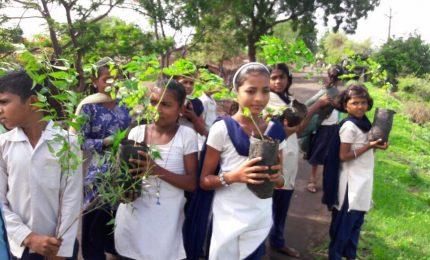 Etiopia, piantati 350 milioni alberi in 12 ore