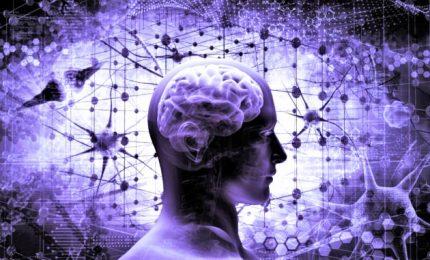 Il nuovo progetto di Musk: potenziare il cervello con un chip