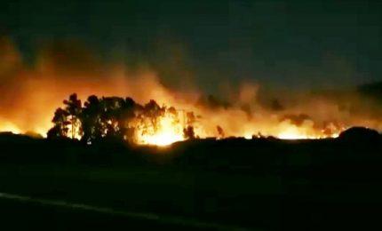 Vasto incendio nel nuorese, chiusa la statale 131