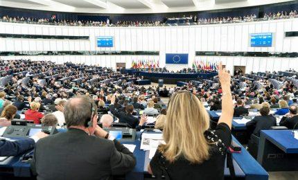 Primi mal di pancia nell'Europarlamento, Verdi delusi dal vertice nomine. Appello di Tusk: rientrate nella maggioranza