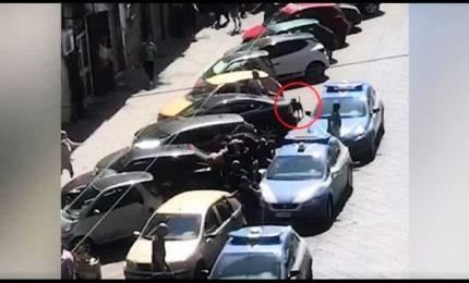 Pitbull ucciso da un poliziotto, il video in rete